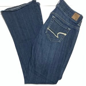 American Eagle Outfitters Vintage Wide leg flare Denim Jeans